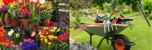 Oss retail fioristi e giardinaggio